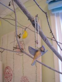 09blue.bird