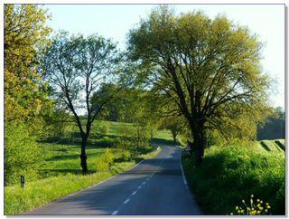 Tuscany.Landscape_path_005