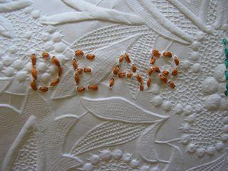 Paola stitching (12)