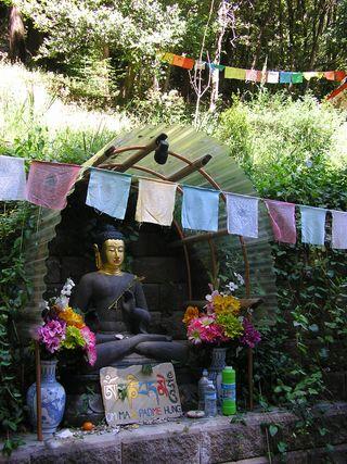 Buddha1 (3)