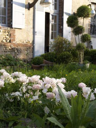 Claire-Basler-Flower-Garden