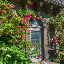 Hemis-facade-fleurie-1120x700