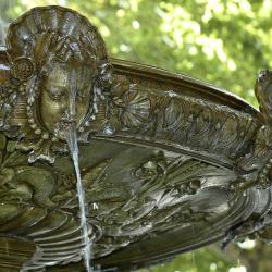 Fontaine place delille