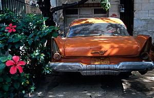 Orangecarbig1